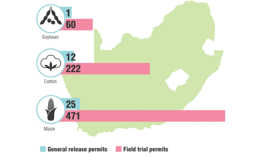 GMO-permits-issued-in-SA-graphs_2