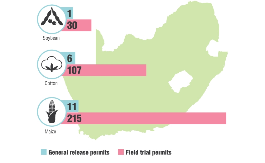GMO-permits-issued-in-SA-graph_1b